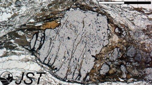 Deformed garnet porphyroblast under linear polarized light