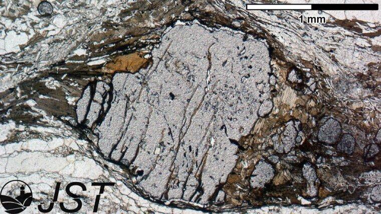 Deformierter Granat-Porphyroblast in linear polarisiertem Licht