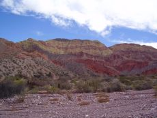 sedimentary succession, Andes 2005